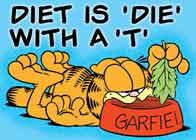 """Diet (régime), c'est """"Die"""" (mourir) avec un T"""